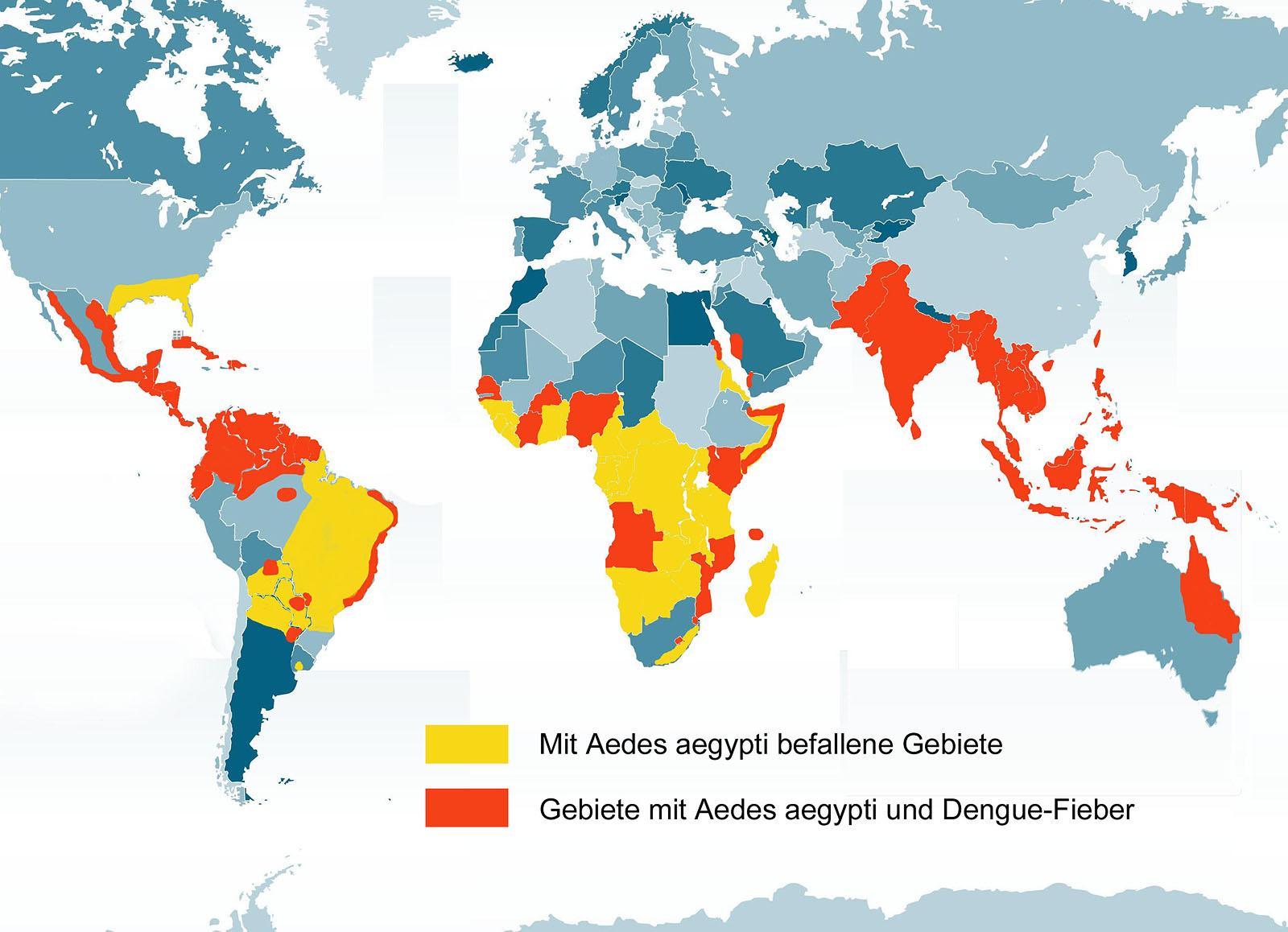 Malaria Kambodscha Karte.Dengue Fieber Service Reisemedizin Goruma